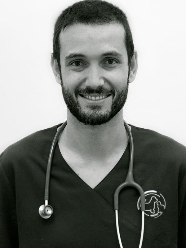 JOSE RAMON PACÍN RUBIO